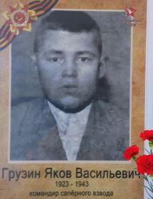 Грузин Яков Васильевич