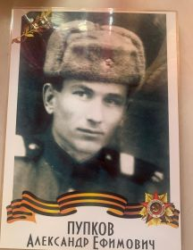 Пупков Александр Ефимович