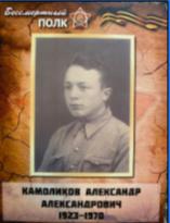 Камоликов Александр Александрович