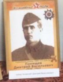 Панищев Дмитрий Васильевич