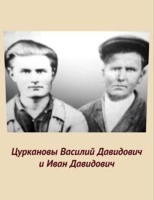 Цурканов Василий Давидович