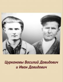 Цурканов Иван Давидович