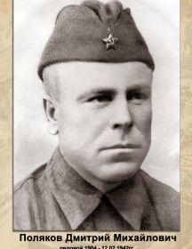 Поляков Дмитрий Михайлович