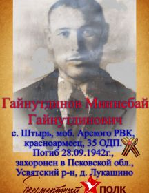 Гайнутдинов Миннебай Гайнутдинович