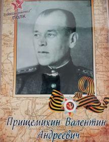 Прищемихин Валентин Андреевич