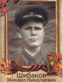 Шибаков Михаил Николаевич