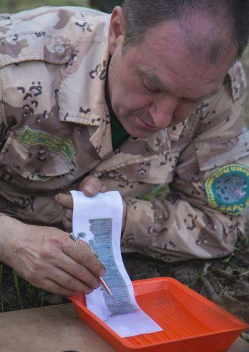 «Неугасшие имена»: специалисты расшифровали  солдатские медальоны и нашли родных через сайт Полка