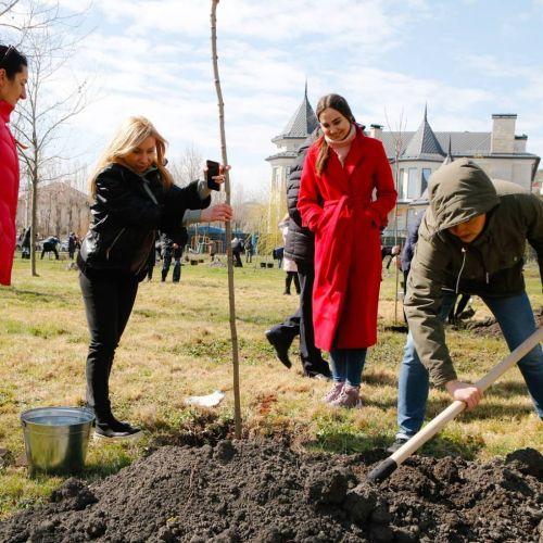 Первые саженцы «Сада Памяти» появились в Новороссийске