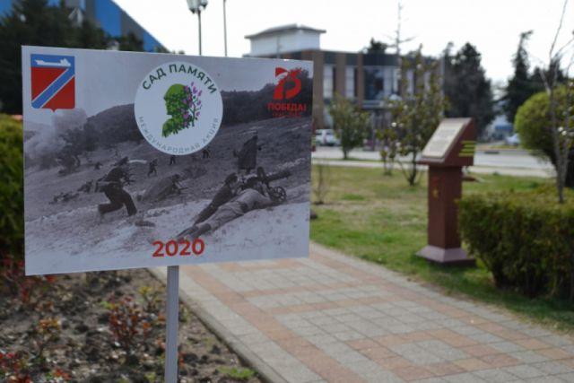 Туапсе присоединился к  акции «Сад памяти»