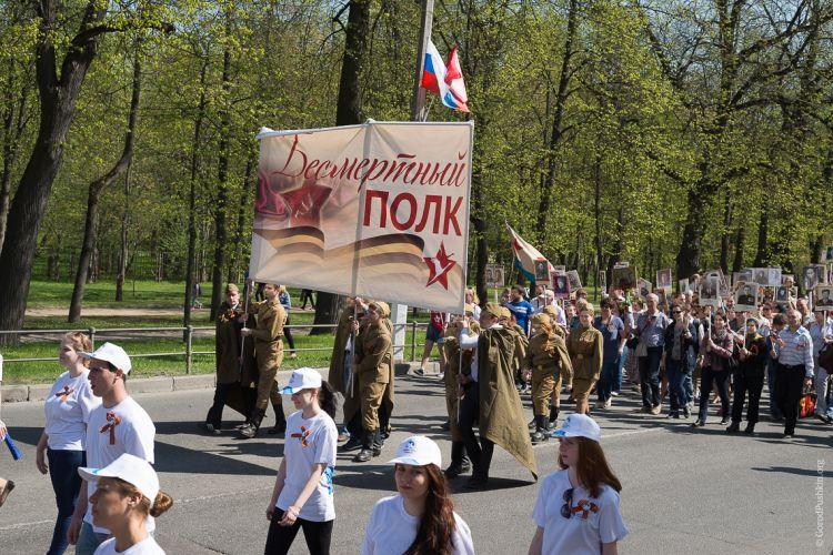 Пушкин готов выйти Бессмертным полком