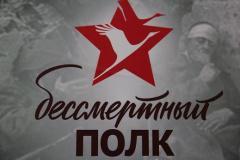 Сбор и построение колонны Бессмертного полка в Нижнем Новгороде