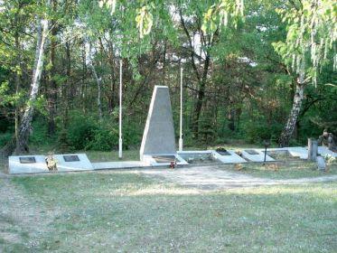 Братская могила 59 жителей, погибших во время немецких бомбардировок в сентябре 1939 г.