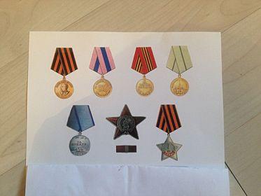 Боевые награды: