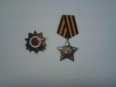 Орден Отечественной войны I степени, Орден Славы III степени, медали
