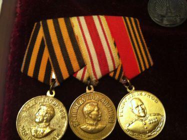 За Победу над Германией; За Победу над Японией 3 сентября 1945 года; Георгий Жуков 1996
