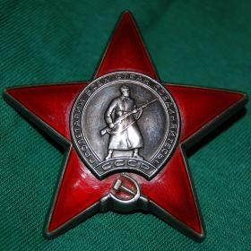 Орден «Красная звезда» (Фронтовой приказ № 138/н от 28.09.1943 )