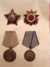Главные боевые награды Лукьянова Сергея Алексеевича