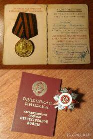 """Медаль """"За победу над Германией в Великой Отечественной войне 1941-1945 гг."""" и ОРДЕН ОТЕЧЕСТВЕННОЙ ВОЙНЫ II степени"""