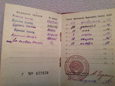 орден Красного Знамени №511310