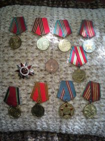 Орден отечественной войны II степени, 20 лет Победы, 40 лет Победы, 40 лет вооруженным силам СССР медаль , Медаль 70 лет вооруженным силам СССР