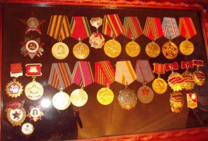 Награжден тремя орденами (Красной звезды, Отечественной Войны 1 степени, Трудовой Славы 3 степени) и двенадцатью медалями (За Отвагу, За Боевые заслуги. За освобождение Украины, За победу над Германией и т.п.).