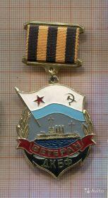Нагрудный знак ветеран Дважды краснознаменного Балтийского Флота