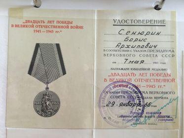 20 лет Победы в Великой отечественной войне 1941 - 1945 гг