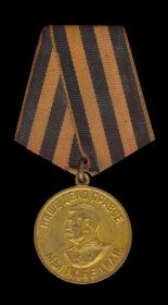 Медаль За победу над Германией в Великой Отечественной войне 1941-1945гг.»