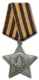 Орден Славы 3 ст.