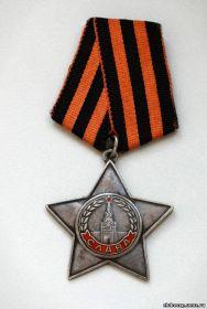 Орден Славы III степени, Орден Отечественной Войны II степени