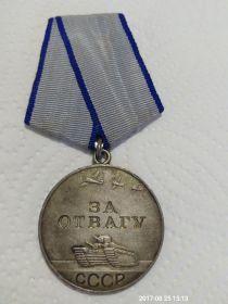 """Медаль """"За отвагу"""", приказ №219 от 06.11.1943"""