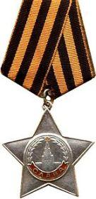 Награжден орденом Славы III степени