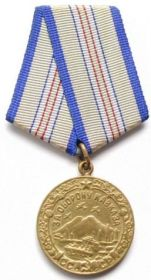 медаль «За оборону Кавказа»;