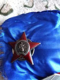 Орден Отечественной войны, Орден Красного Знамени, За Отвагу, за Взятие Кенигсберга