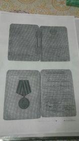 Медаль за Победу над Гермарнией в Великой Отечественной Войне 1941-1945