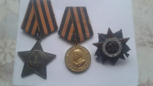 орден Красной звезды, орден Славы 3 ст., медали - За победу над Германией, 60 лет ВС СССР