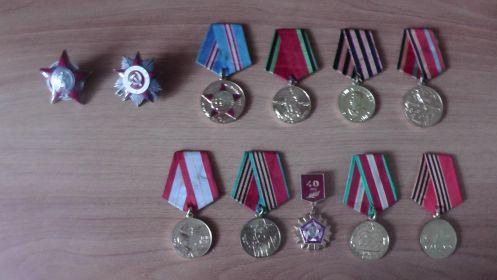 орден Красной Звезды; орденом Отечественной войны и десять медалей