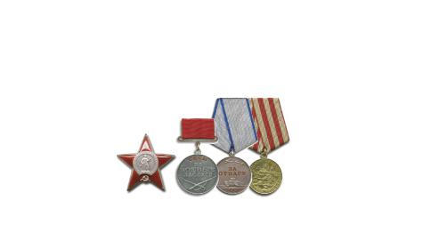 орден Красной звезды, медаль За отвагу, медаль За боевые заслуги, медаль За оборону Москвы.