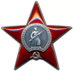 орден Красной Звезды:  Приказ подразделения  №: 295 от: 05.06.1942  Издан: ВС Карельского фронта