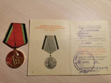 Медаль «Двадцать лет победы в Великой Отечественной Войне 1941-1945 гг.»
