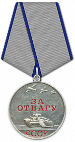 Награжден  медалью  «За отвагу»  посмертно.