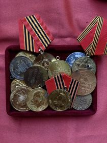 и другие медали мирного времени