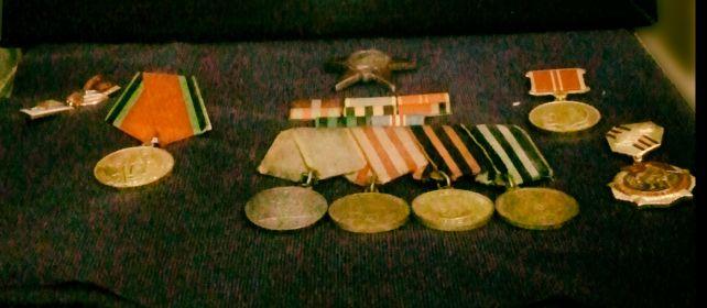Медаль За боевые заслуги, медаль За оборону Москвы, Орден Красной звезды;