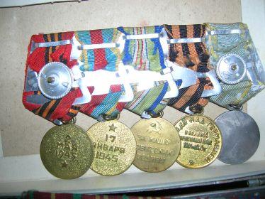 Медали: за оборону Кавказа, за освобождение Варшавы, за взятие Берлина, за Боевые заслуги, всего 17 медалей, ордена Красной Звезды и Отечественной войны.