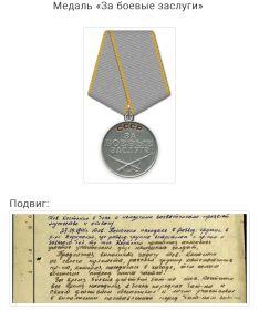 Орден «Красной заезды», медаль « За боевые заслуги», орден «Великой Отечественной войны 2 степени», медаль «За взятие Кенингсберга»