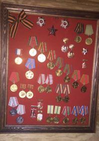 Орден Красной Звёзды, За оборону Ленинграда, За победу над Германией, За победу над Японией