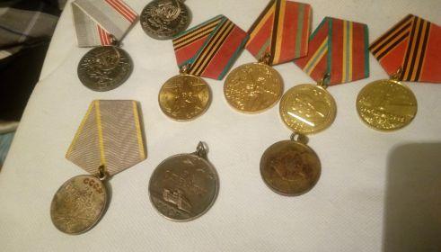 Медаль «За оборону Сталинграда», медаль  «За Отвагу», медаль «За боевые заслуги».