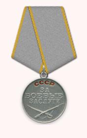 орден Красной Звезды, медаль За отвагу, За боевые заслуги, За взятие Кенигсберга, За взятие Берлина, За победу над Германией