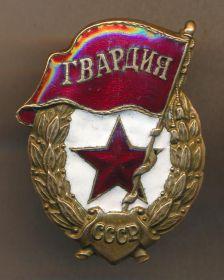 Орден Красного знамени, Орден ВОВ 1 степени, значок Гвардия, юбилейные медали