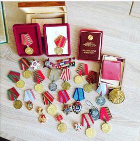 Орден боевого красного знамени, медали за отвагу, взятие Берлина и тд.
